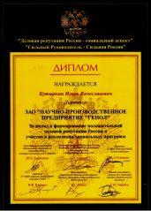 Диплом за формирование положительной деловой рекпутвции России